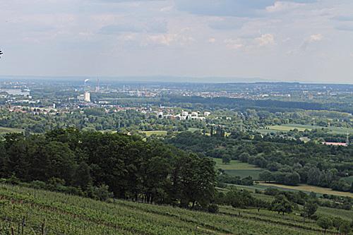 Goethestein - Aussicht auf die Rheinebene.