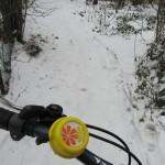Winterradeln 25.1.2013