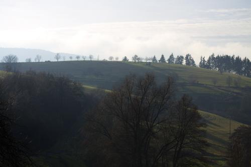 Rheingaualpe
