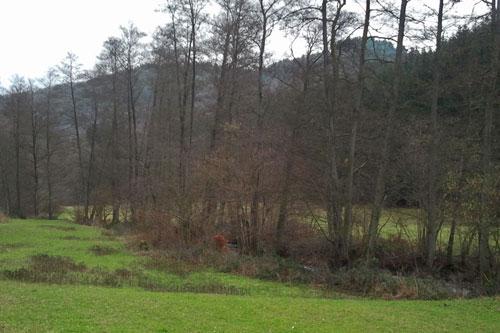 Wiesen am Ernstbach lassen vom Frühling träumen.