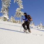 Schneeschuhwanderer. (Foto: © Z Fotografie - Fotolia.com)