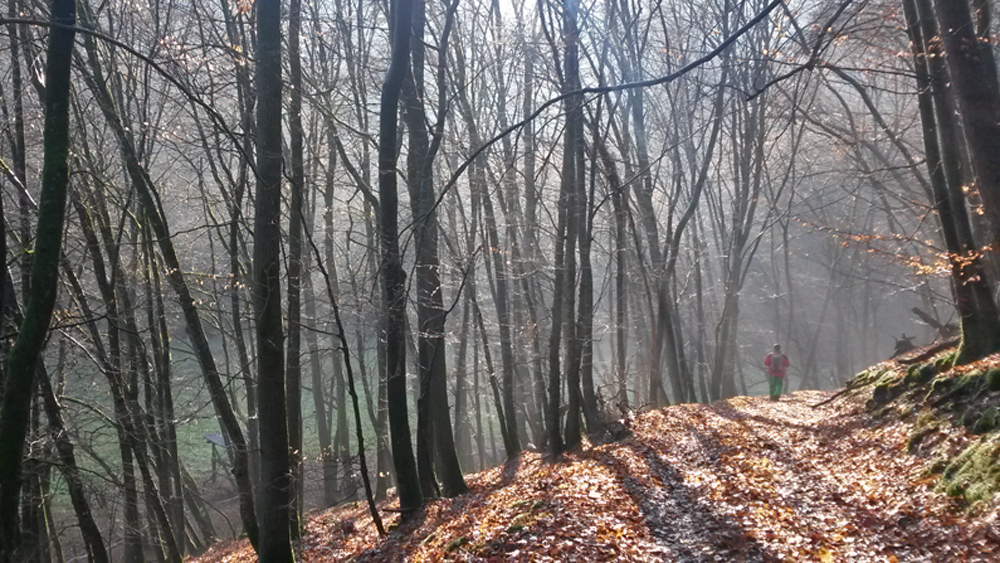 Winterwandern auf dem Dünnbach-Pfad