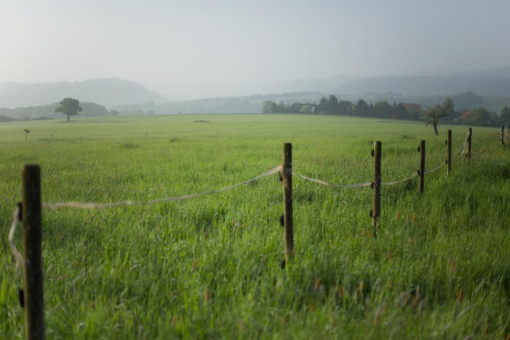 Blick vom Schindelberg nach Süden