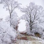 Hiwwelrunde Heideblick im Winter