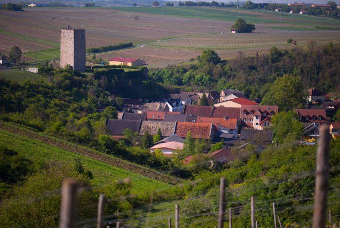 Schwabsburg