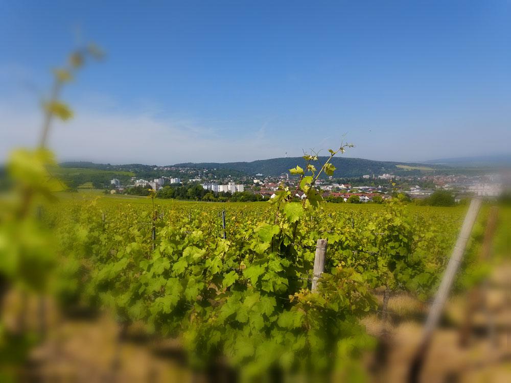 Bad Kreuznach im Nahe-Bergland. Hinten ist der Fernsehturm zu erkennen.