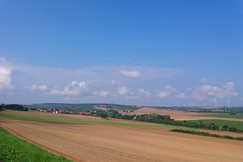 Blick in die Pfalz.