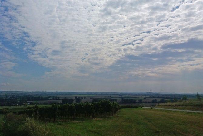 Blick vom Moruffberg oberhalb von Stadecken-Elsheim.