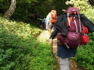 Höhenangst überwinden - Kurs im Mittelrheintal @ Oberes Mittelrheintal [AUSGEBUCHT]