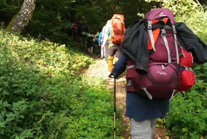 Trekking auf Pfälzer Art. Auf dem Pfälzer Höhenweg zur Kupferberghütte.