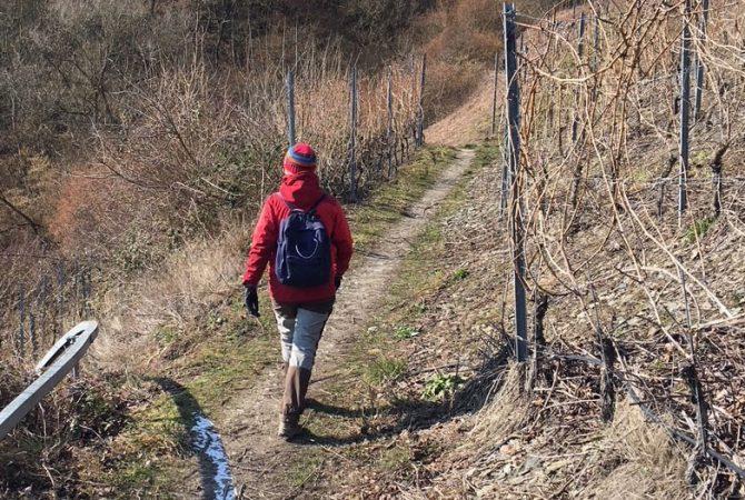 Wandercoaching im Mittelrheintal.