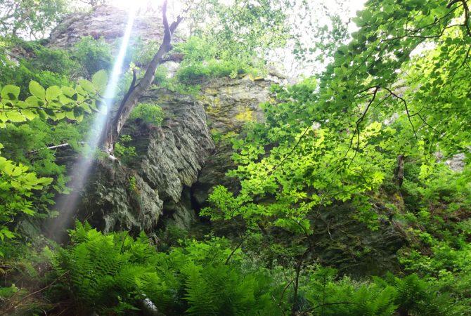 Zacken-Beilstein-Steig: 15 Meter sehen von unten weniger hoch aus als von oben.