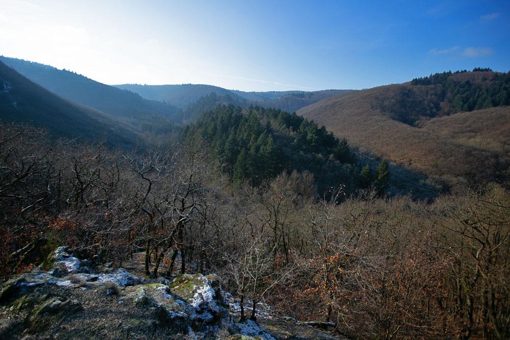 Hunsrücker Landschaft