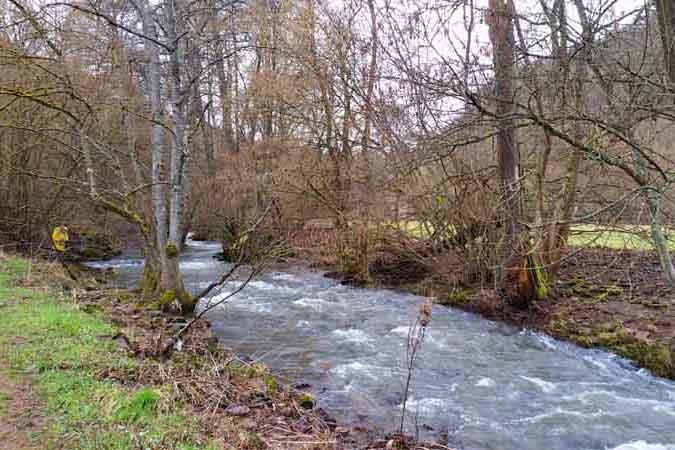 Hildegard von Bingen Weg Fischbach